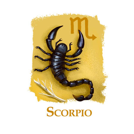 Creative digital illustration of astrological sign Scorpio. Eighth of twelve signs in zodiac. Horoscope water element. Logo sign with scorpion. Graphic design clip art for web and print. Add any text.
