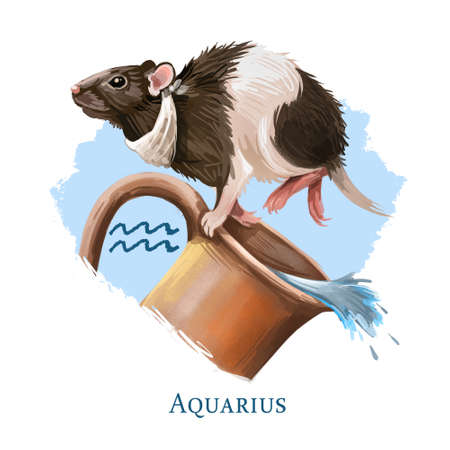 Aquarius creative digital illustration of astrological sign. Rat or mouse symboll of 2020 year signs in zodiac. Horoscope of Metal Rat. Logo sign with water jug. Graphic design clip art for web, print Zdjęcie Seryjne