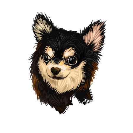 Chihuahua dog breed isolated on white background digital art illustration. Cute pet hand drawn portrait. Graphic clipart design realistic animal