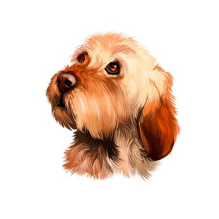 Basset Bleu de Gascogne of Blue Gascogne Basset hound type met lange benen, hond digitale kunst illustratie geïsoleerd op een witte achtergrond. Schattig huisdier hand getekend portret. Grafische illustraties ontwerp Stockfoto
