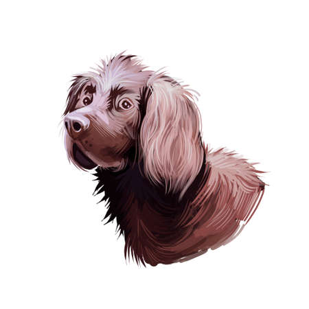 German Longhaired Pointer dog breed digital art illustration isolated on white. Popular puppy portrait with text. Cute pet hand drawn portrait. Graphic clip art design 写真素材