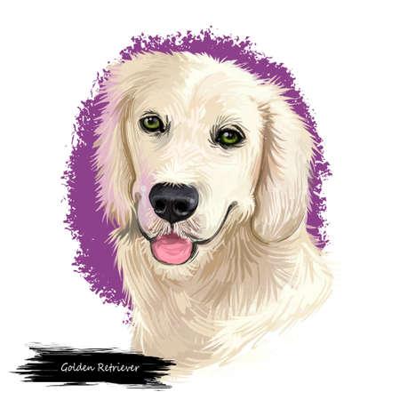Gordon Setter dog digital art illustration isolated on white background. Scotland origin large-sized hunting, gun, sporting dog. Pet hand drawn portrait. Graphic clip art design for web, print
