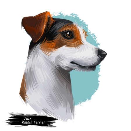 Jack Russell Terrier, Jack Russell, JRT, illustration d'art numérique de chien Jack isolé sur fond blanc. Chien terrier d'origine d'Angleterre. Portrait dessiné à la main pour animaux de compagnie. Conception graphique de clip art pour l'impression Web