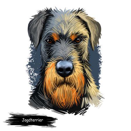 Jagdterrier, Hunting terrier, German Jagdterrier dog digital art illustration isolated on white background. Germany origin hunting dog. Pet hand drawn portrait. Graphic clip art design for web print