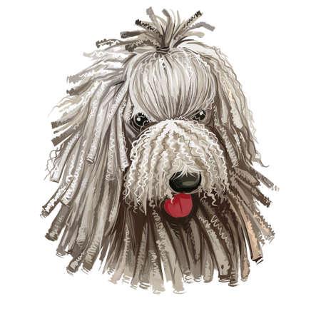 Komondor, Hungarian Komondor, Hungarian Sheepdog, Mop dog digital art illustration isolated on white background. Hungary origin working guardian dog. Pet hand drawn portrait. Graphic clip art design