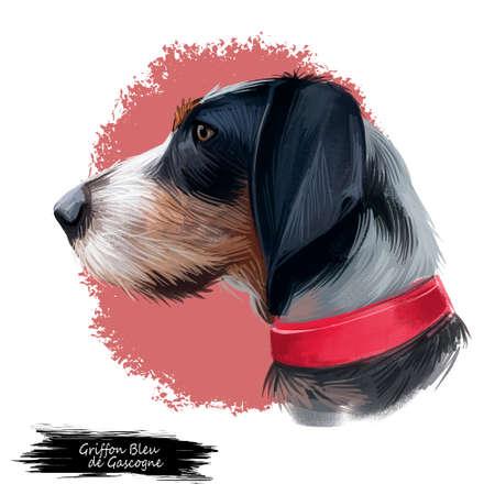 Griffon Bleu de Gascogne dog digital art illustration isolated on white background. France origin medium-sized scenthund hunting dog. Pet hand drawn portrait. Graphic clip art design for web, print Stockfoto