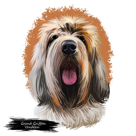 Great Pyrenees, Pyrenean Mountain, Pyr, GP, PMD dog digital art illustration isolated on white background. France, Spain origin guardian, working dog. Pet hand drawn portrait. Graphic clip art design 스톡 콘텐츠