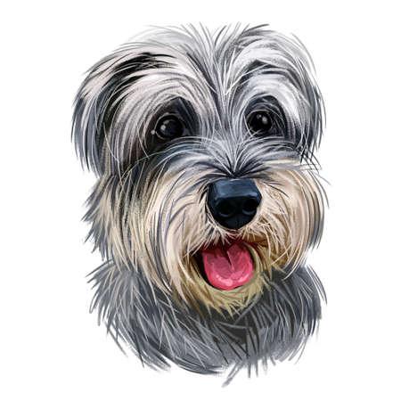 Miniature schnauzer, ratting hound guarding dog zwergschnauzer digital art illustration. German breed of animals closeup portrait. Canine animal with stuck tongue, pet puppy having docked tail.