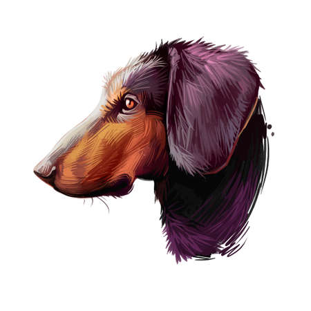 Montenegrin mountain hound, dog of crnogorski planinski goni breed digital art illustration. Pet from Montenegro called Yugoslavian. Animal has smooth coat, hunting and working doggy canine