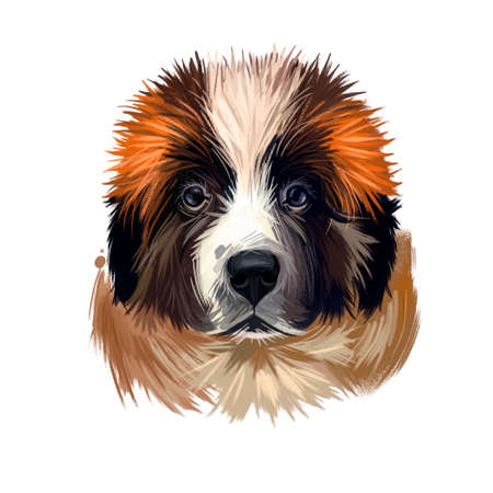 Moscow watchdog, Russian Moskovskaya storozhevaya sobaka digital art illustration. Russia originated pet of large weight and gentle temperament. Mountain dog canine powerful breed closeup portrait