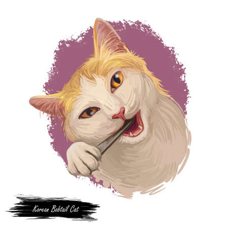 Korean bobtail kitten in sitting pose on white background. Digital art illustration of hand drawn domestic animal with mustache for web. Small kitty with shorthair coat and yellow eyes looking Фото со стока