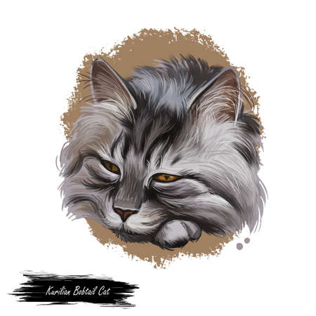 Kurilian bobtail kitten isolated on white background. Digital art illustration of hand drawn little cat for web. Head of domestic kitten with dense and fluffy ashy grey shade of coat, black eyes