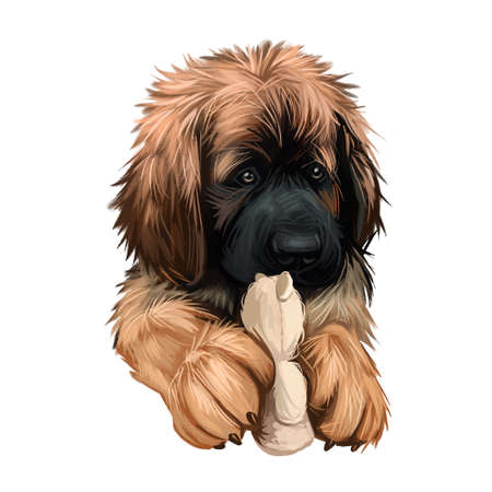 Leonberger puppy dog breed playing with toy digital art. German originated animal, domesticated mammal with playful mood. Giant purebred canis lupus, canine hound from Germany, watercolor portrait