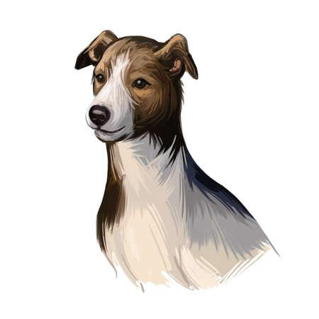 Magyar agar puppy dog sighthound canine digital art. Austro-Hungarian empire originated pet, domesticated mammal, canis lupus familiaris breed. Gazehound watercolor portrait closeup Imagens