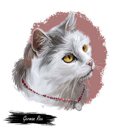 German rex isolated on white background. Digital art illustration of hand drawn domestic kitty for web. Kitten with colorful coat with deep eyes. Little pet with mustache, sable fur watercolor Banque d'images - 130997465