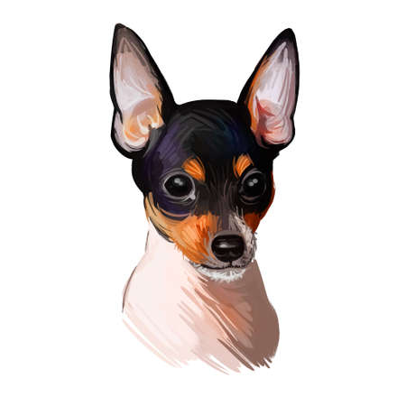 Toy Fox Terrier dog breed portrait isolated on white. Digital art illustration, animal watercolor drawing of hand drawn doggy for web. Pet has short and straight coat that white with black markings