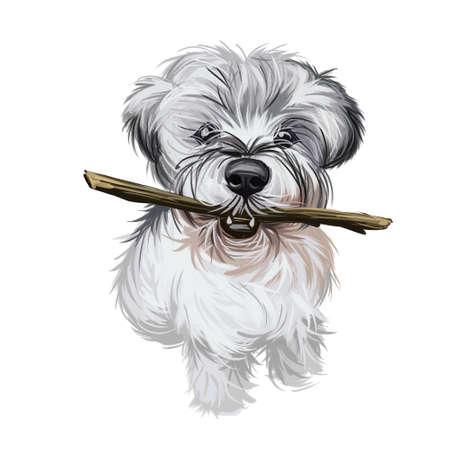Miniature Schnauzer dog, zwergschnauzer dwarf puppy digital art. German hound of small size, muzzle of pet holding wooden stick in teeth. Playful domestic animal, watercolor portrait realistic