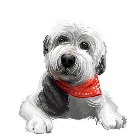 Old English sheepdog puppy wearing handkerchief digital art. Domesticated animal watercolor portrait, closeup of pets muzzle, doggy with long fur. Canine protecting and guarding farm livestock 写真素材 - 130995168