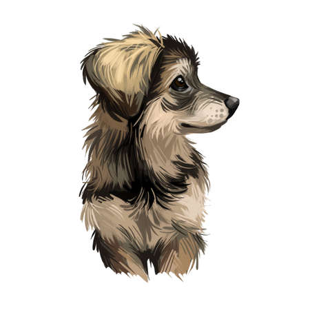 Northern Inuit puppy, designer created dog of Canada digital art. Canadian crossbreed resembling to wolf, watercolor portrait of domestic animal, puppy with long fur. Canine hound looking in distance