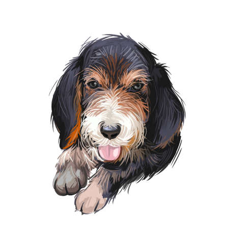 Otterhound puppy of breed from Britain digital art. Watercolor portrait of muzzle, pet sticking out tongue, British purebred. Canine with long ears and coat, canis lupus, domesticated animal Zdjęcie Seryjne
