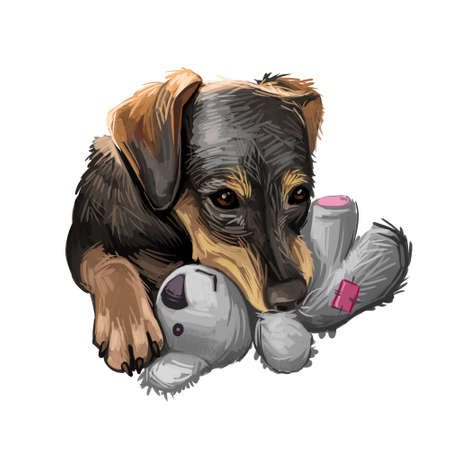 Serbian Hound pet digital art, watercolor hand drawn portrait of canine. Domestic animal from Serbia and Montenegro, Balkan puppy with long ears and smooth fur.