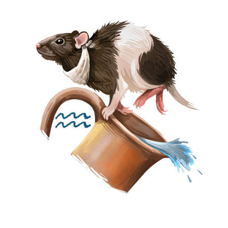 Aquarius creative digital illustration of astrological sign. Rat or mouse symboll of 2020 year signs in zodiac. Horoscope of Metal Rat. Logo sign with water jug. Graphic design clip art for web, print Banco de Imagens - 131779125
