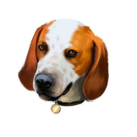 Virginia Foxhound Black And Tan dog digital art illustration isolated on white background. American origin large fox hunting dog. Cute pet hand drawn portrait. Graphic clip art design for web, print Banco de Imagens - 131779258