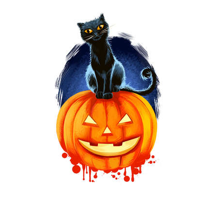 Halloween greeting card isolated pumpkin with black cat. Digital art illustration Halloween symbol scary kitten and jack lantern, smiling pumpkin with candle inside, scary blue sky, web t-shirt print.