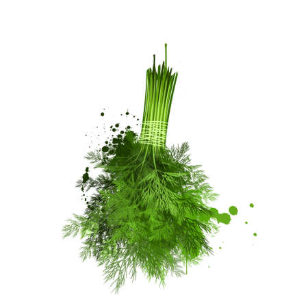 Twig of dill isolated on white background. Annual herb in the celery family Apiaceae. Anethum graveolens. Shepu. Soa. Shiloh. Shatapushpa. Herbs and spices series. Fresh green dill. Digital art