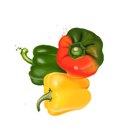 Paprika red, yellow, orange and green peppers isolated on white. Pungent pepper called sweet pepper. Cultivar of the species Capsicum annuum paprika. Herbs and spices collection. Digital art.