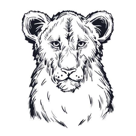 Panthera leo vector bebé atigrado retrato en primer plano aislado dibujo camiseta impresa, monocromo. Abrigo peludo negro animal felino. Depredador de dibujo de vida silvestre. Ilustración de dibujado a mano de criatura carnívora Ilustración de vector