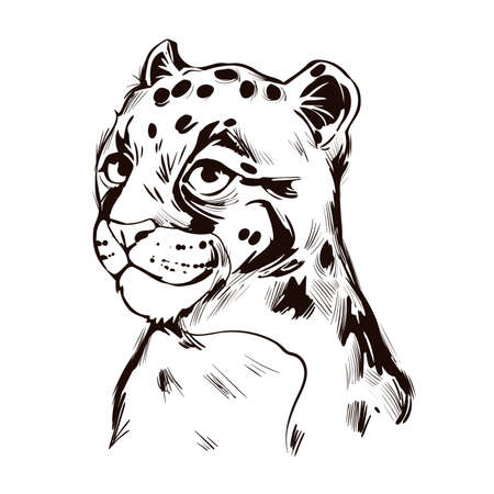 Clouded leopard baby tabby Neofelis wild cat from Himalayan t-shirt print, isolated monochrome design sketch. Vector illustration of mainland Sunda clouded leopard, hunting season wildcat portrait Ilustração