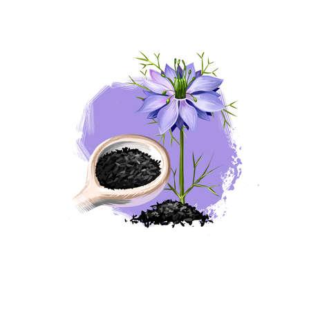 Kala Jeera - illustration d'art numérique d'herbe ayurvédique pourpre Fleban avec texte isolé sur blanc. Plante thermale biologique saine largement utilisée dans le traitement, pour la préparation de médicaments pour les soins de santé