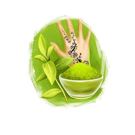 Mehendi - illustrazione di arte digitale dell'erba ayurvedica del hennè con testo isolato su bianco. Pianta organica sana ampiamente utilizzata nel trattamento e nella cura, pianta per la preparazione di medicinali per l'assistenza sanitaria naturale.