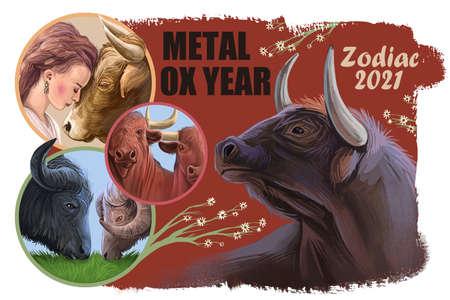Aquarius metal ox year horoscope zodiac sign isolated. Digital art illustration of chinese new year symbol, astrology lunar calendar sign. Horned animal, aquarius horoscope icon, oriental cow Imagens