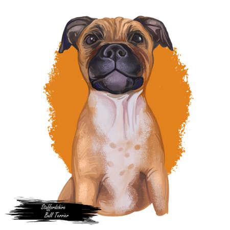 Staffordshire Bull Terrier digital art illustration of cute canine animal of tan color. Muscular dog breed, British short-haired terrier of medium size. Cross-breeding Bulldog, English white terrier. Imagens