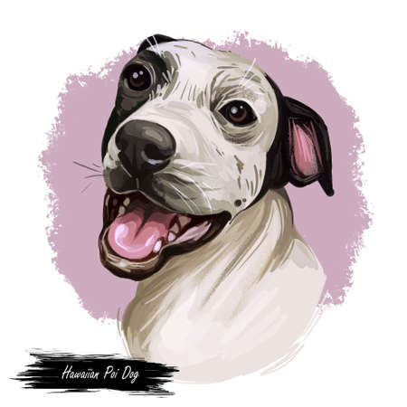 Hawaiian Poi Dog extinct breed of pariah dog from Hawai. Hand drawn digital art dog portrait, american cute animal, domesticated pet. Rare ancient breed, Kuri, Marquesan Dog, Tahitian Dog