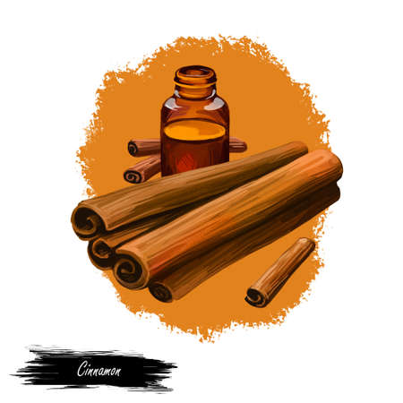 Cinnamon dry sticks and bottle with remedy isolated digital art illustration. Dried bark strips, bark powder in glass bottle, Cinnamomum verum. Spicy food condiment, herb with adverse effect. Stock Photo