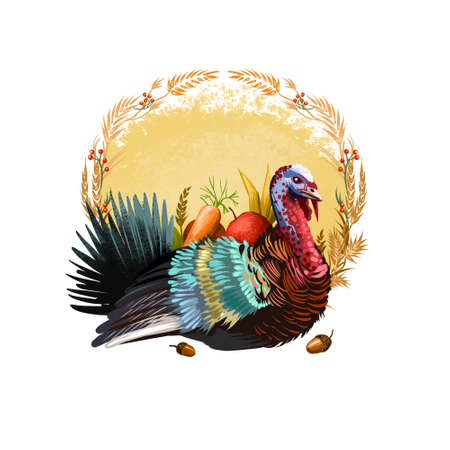 Happy thanksgiving day banner illustration with holiday turkey and autumn harvest elements as carrot, apple, wheat, small acorns. Digital art illustration poster isolated on white background