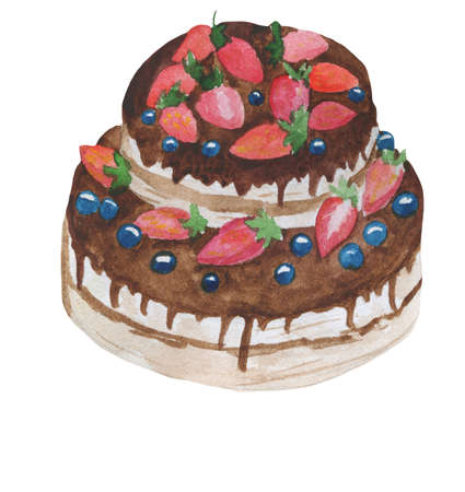 Chocolate cake with summer fruits, blueberries and strawberries. Layered chocolate cake decorated with cream and berries. Cake with raspberries topping. Strawberry torte. Tasty dessert. Gourment dish Reklamní fotografie - 157943492