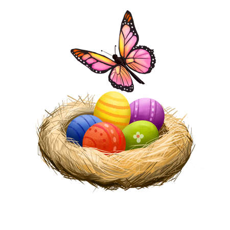 Happy Easter digital banner. Spring butterfly and decorated easter eggs in nest isolated on white. For posters, banners, greeting cards. Clip art illustration. Postcard element in cartoon style.