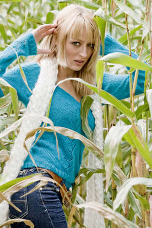 Young beauty blond woman in a cornfield photo