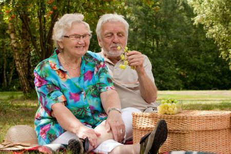 Elderly couple enjoying the spring in the park Stock Photo - 5217126