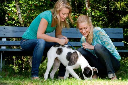 lesbiana: Dos ni�as y una rubia bulldog americano en el parque