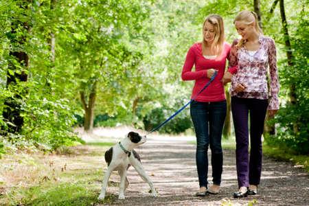 parejas caminando: Dos ni�as y una rubia bulldog americano en el parque