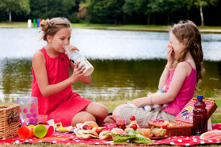 picknick: Teenagers having a great time in the park