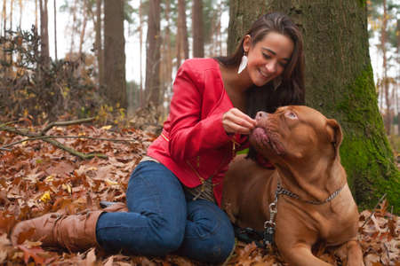 bordeauxdog: Young woman is having fun with her dog in the forest Stock Photo