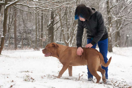 Funky boy is having fun with his dog in the snow Stock Photo - 19167324
