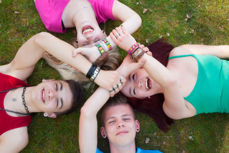 Four teenagers are having fun in the grass Stock Photo - 19908669