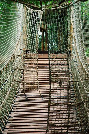 sturdy: A sturdy rope bridge